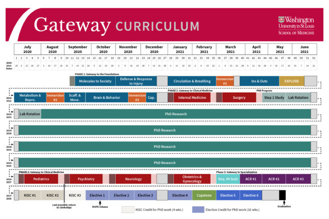 Gateway Curriculum MSTP overview